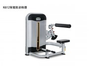 ¥19800 K612背腹肌训练器